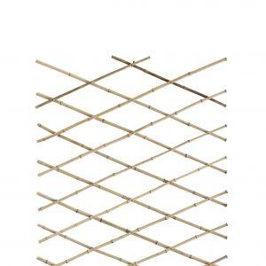 bamboo-espalie